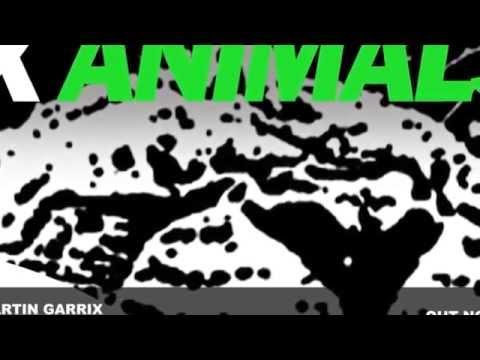 INNA - Sun is up & MARTIN GARRIX - Animals -- REMIX