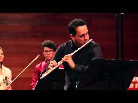 Concierto para flauta y orquesta en Re menor (Carl Philipp Emanuel Bach)