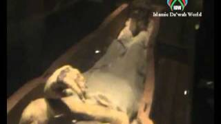 Firon Mummy  in Egypt Museum(Islamic Da'wah World http://www.dawahworld.com., 2010-08-11T12:59:15.000Z)