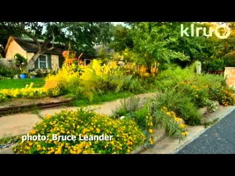 Central Texas Landscape Design Ideas - Home Dignity