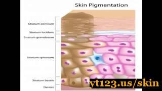 Get Fair Skin Fast Home Thumbnail
