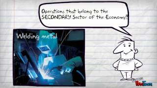 The Three Sectors of the Economy