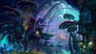 Solidarity - A Liquid Drum and Bass Mix