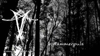 Dark Ambient - Vinterriket - hinweg CD 2014 advance promo medley