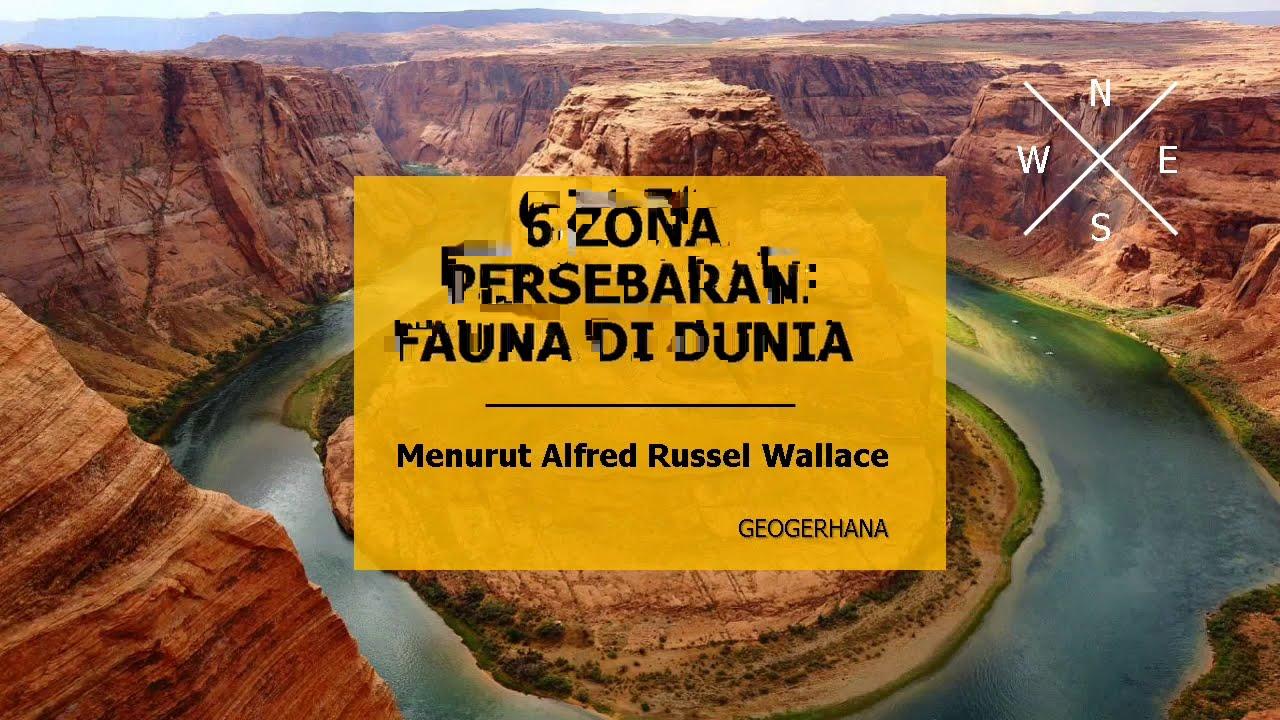 6 ZONA FAUNA DUNIA - ALFRED RUSSEL WALLACE