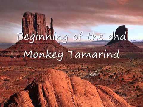 Monkey TamarindBeginning of the End