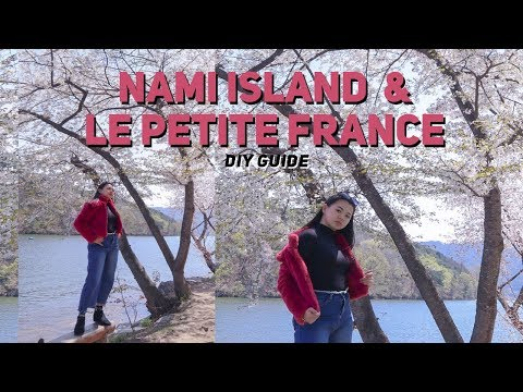 🌸-seoul-to-nami-island-and-petite-france-travel-guide-|-seoul-vlog-2