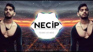 Necip -