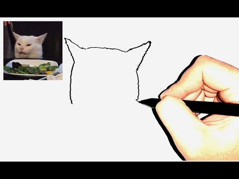 Menggambar Sketsa Hewan Lucu Woman Yelling At Cat Meme Youtube