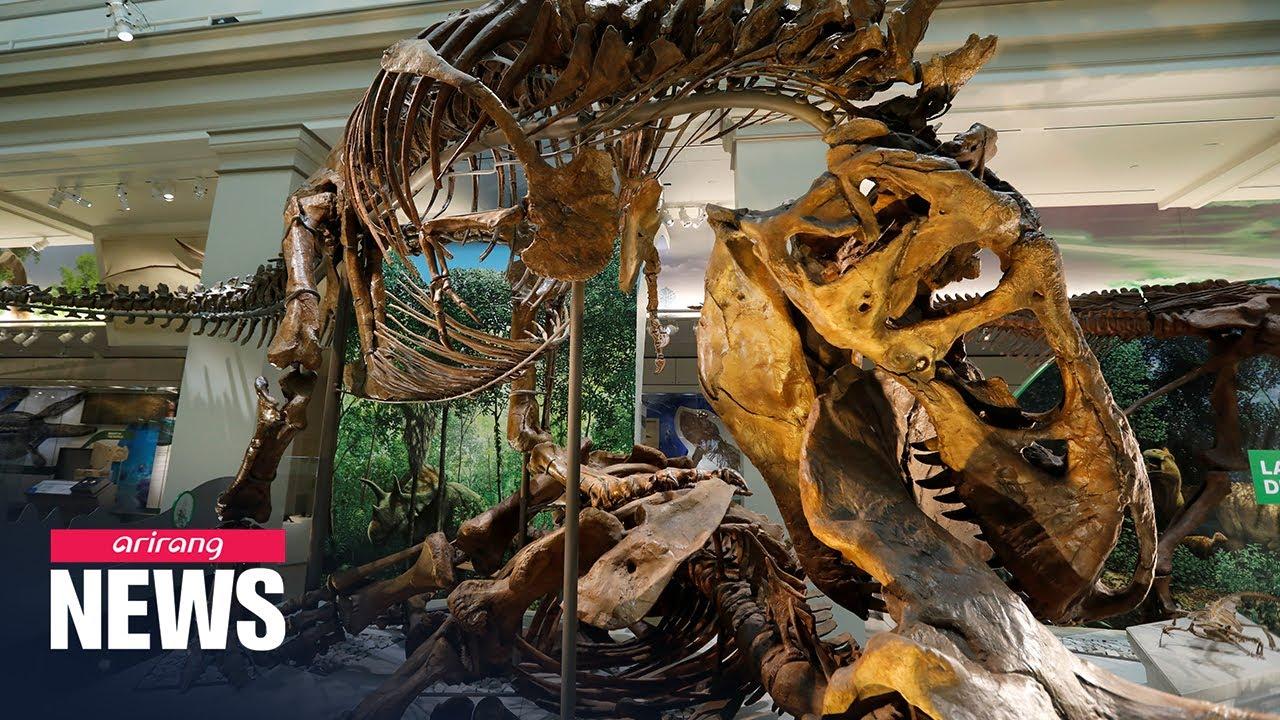 2.5 Billion Tyrannosaurus existed on Earth: Study - Arirang News