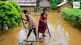 Assam flood takes its toll on people and animals