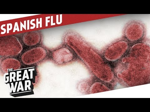 The Spanish Flu I THE GREAT WAR Epilogue 2