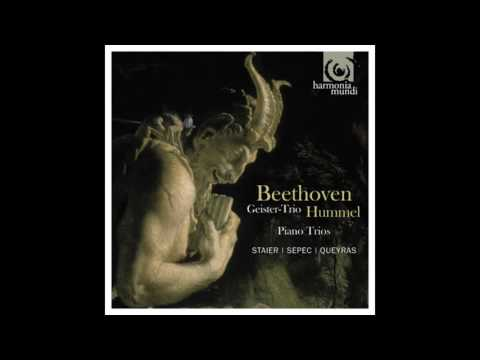 Beethoven: Piano trio in C minor Op 1 No 3 - Staier, Sepec,