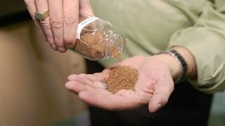 The Importance of Granules on Asphalt Roofing video thumbnail