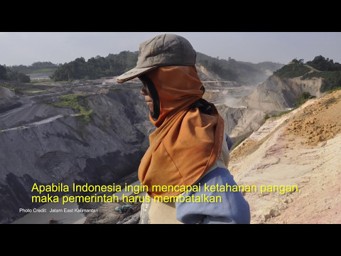 Hungry Coal - Coal Mining and Food Security in Indonesia