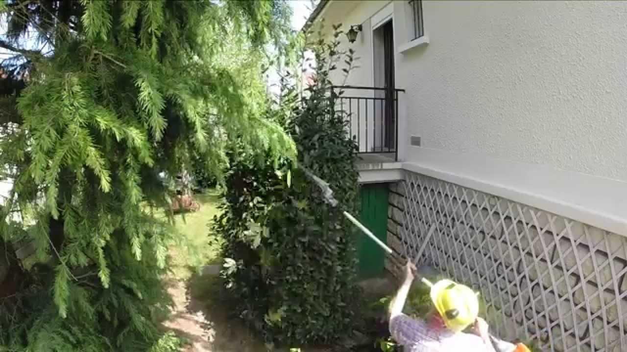 jardinage par philordi taille de mon laurier sauce youtube. Black Bedroom Furniture Sets. Home Design Ideas