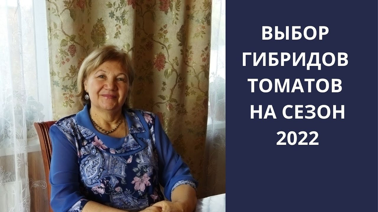 ВЫБОР ГИБРИДОВ ТОМАТОВ НА СЕЗОН 2022