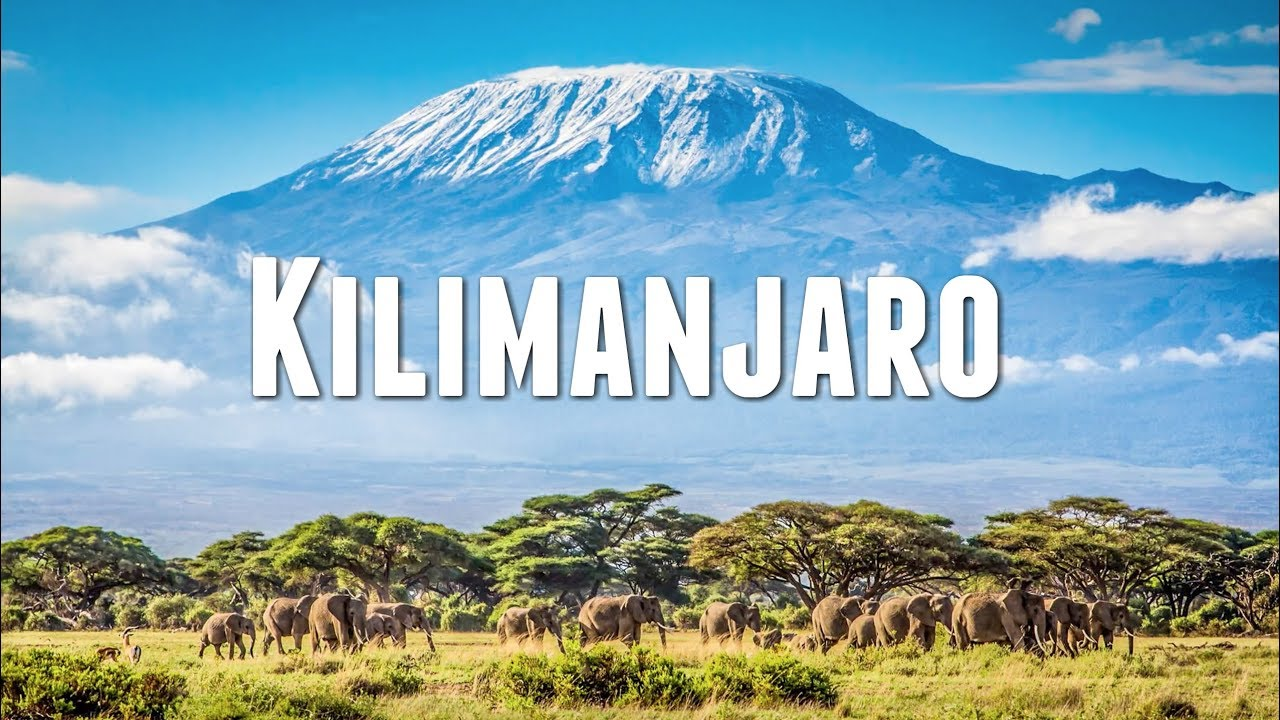Image result for mount kilimanjaro climbing