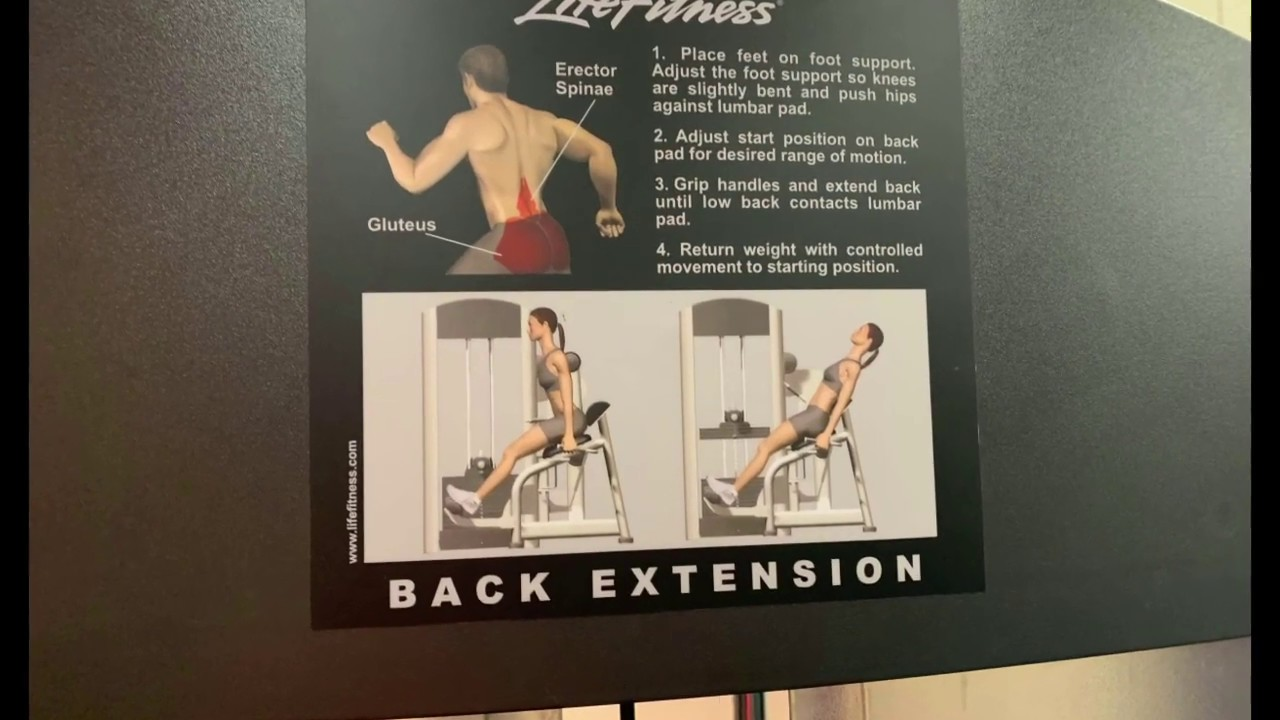 Back Extension - Lower Fitness