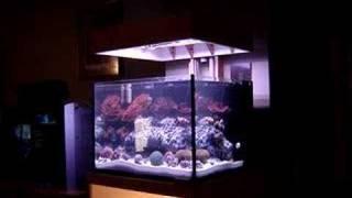 Aquarium Hood Lift