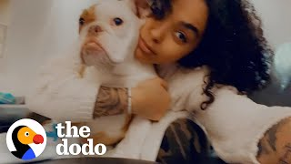This Puppy's Mom Loves His Alter Ego | The Dodo Soulmates