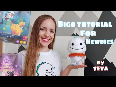 Bigo Tutorial For Newbies   Official Bigo Host   How To Make Money From Home