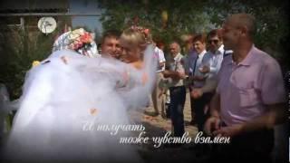 Трейлер свадьбы Демидовых