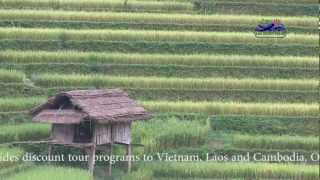 Mu Cang Chai - Yen Bai Province - Vietnam famous rice terrages