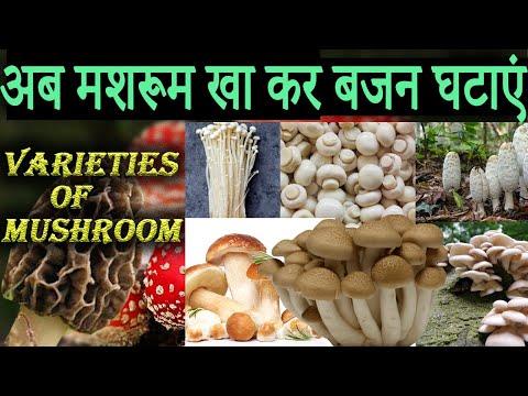 Mushroom Mushroom varieties Vegetables Healthy foods weight loss diet fat loss diet Healthy diet tip