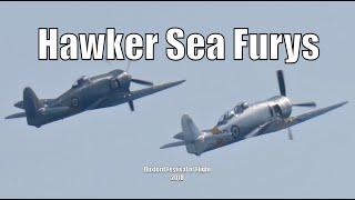 Hawker Fury Pair - Duxford Air Festival 2018