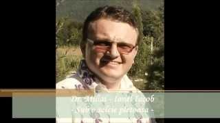 PRICESNE ORTODOXE - Dr. Mihai-Ionel Iacob - Sub o salcie pletoasa