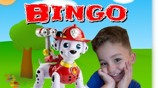 Bingo Song | Nursery Rhymes for kids | 빙고 개 노래 | 종묘장