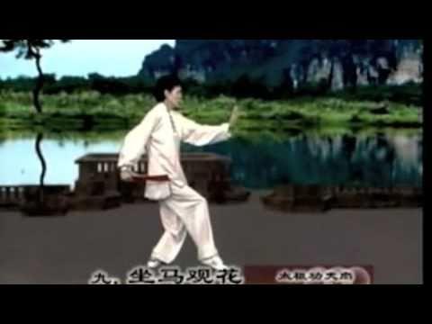 52 Taiji gongfu fan/ waaier set 1 (movements 1-9/52 ) 太极功夫扇