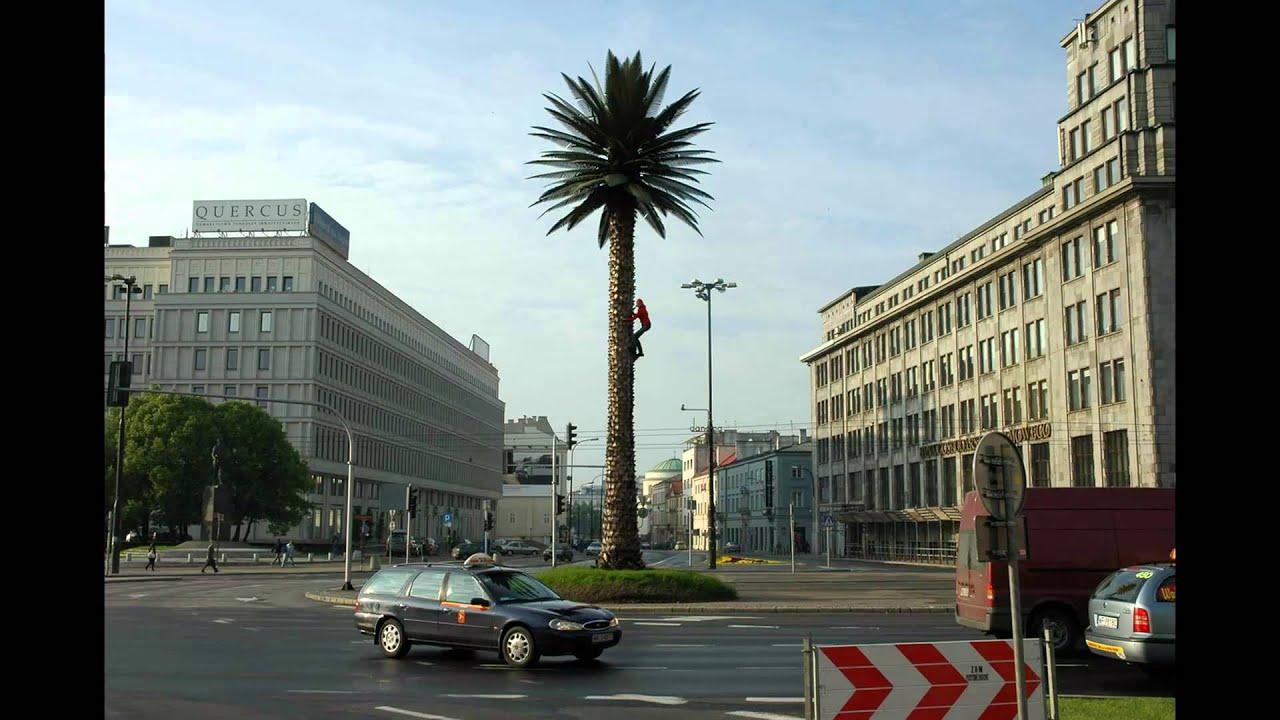 Cecylia Malik 365 Trees With Music By Tara Fuki Sens Slideshow For Fotojatka 13 Youtube