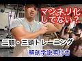 腕を太くしたいなら必ずやって欲しい!自重で鍛えるリバースプッシュアップ解説!!