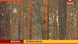Президент настаивает на сохранении Коцюбинского леса