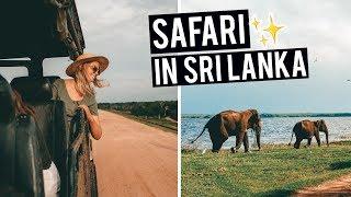 Safari Experience in Sri Lanka | Yala National Park