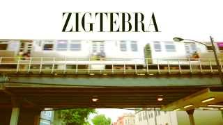 "Zigtebra ""Bay Bay"" Music Video"