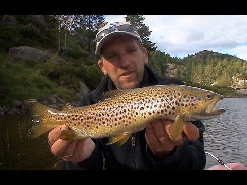 Fishing in Sørlandet (Norway) - Angeln in Sørlandet (Norwegen)