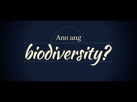 Philippine Biodiversity Strategy and Action Plan (PBSAP)