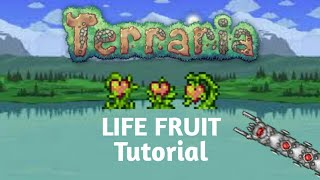 How to get life fruit in Terraria Xbox/Android/IOS