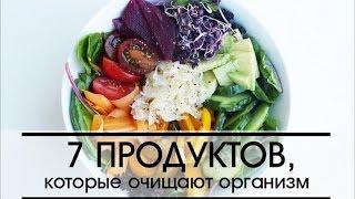 видео Польза для пищеварения. 10 продуктов, облегчающих жизнь нашего кишечника