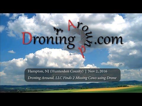 Drones help locate 2 missing cows hiding in woods