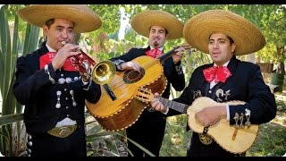Mariachi Party - Sound of Silence