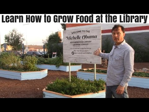 Learn How to Grow Food at the Library and Eat Free Food