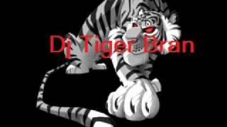 Dj Tiger-Thats so 80