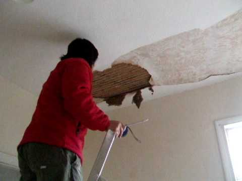 wallpapers/plasters peeling off from the ceiling - YouTube