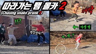 Prank)Chasing snake #2!! Watch Three Combo's hilarious reactions when they encounter a wild snake!