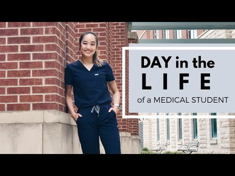 Day in the Life of a 1st Year Medical Student