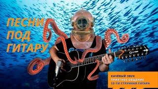Песни под 12-ти струнную гитару, приятное общение, качёвый звук. Русский рок каверы: Пикник, БГ и др